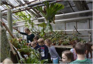 Klasa 1D wOgrodzie Botanicznym