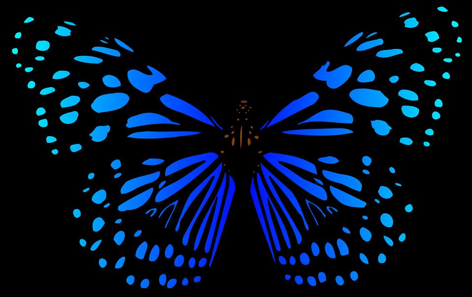 Przygotowujemy Dzień Motyla